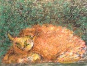 Cat having nap
