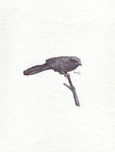 Signed Bird #07