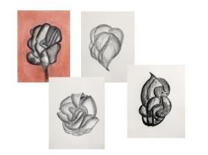 Fascia Collage II